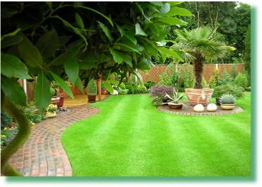 Elmcroft Turf Care - Your Local Independent Lawn Care